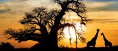 Windhoek Tours - The Best Start to Namibia Tours and Holidays
